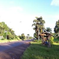 O ponto de ônibus mais utilizado pelos turistas na avenida das cataratas não existe